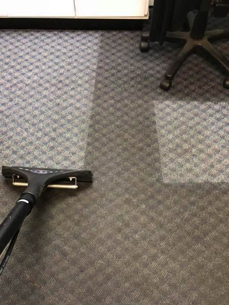 Commercial Carpet Cleaning Service Port Macquarie