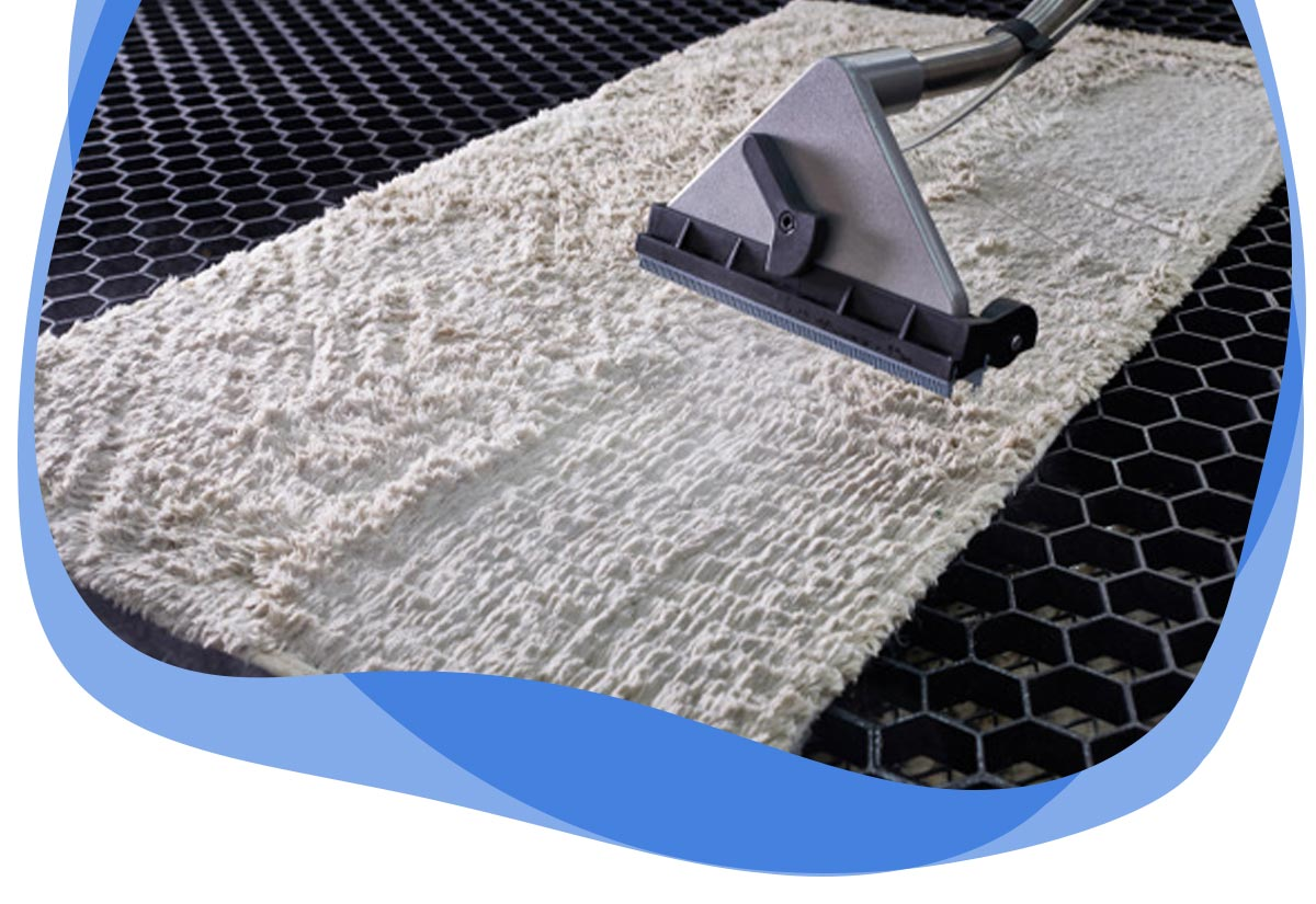Expert Rug Cleaning Port Macquarie